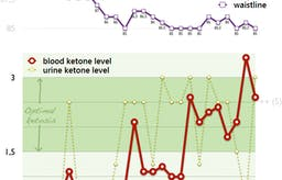Four weeks of a strict keto diet and ketone monitoring