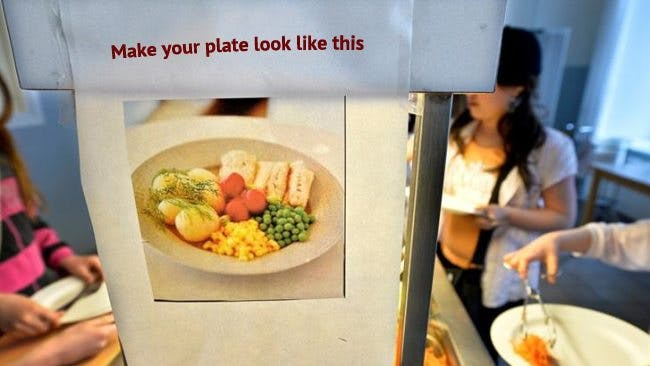 Chief Physician: Forget About the MyPlate Guidelines
