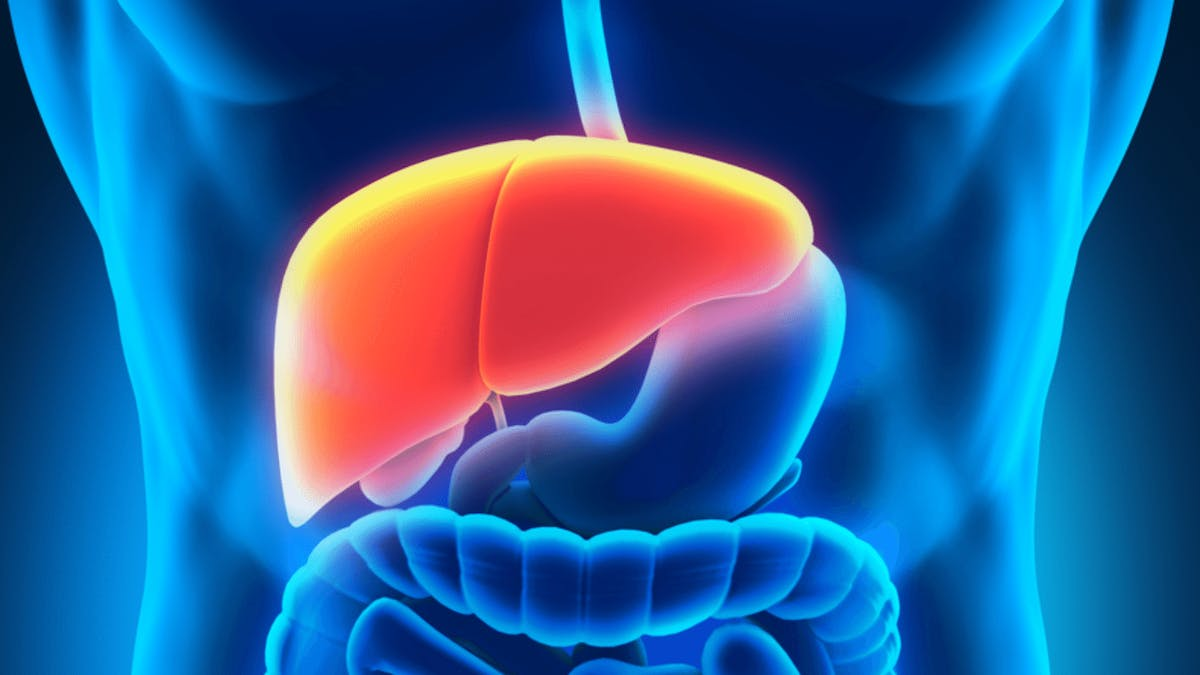 Restoring Liver Function with LCHF?