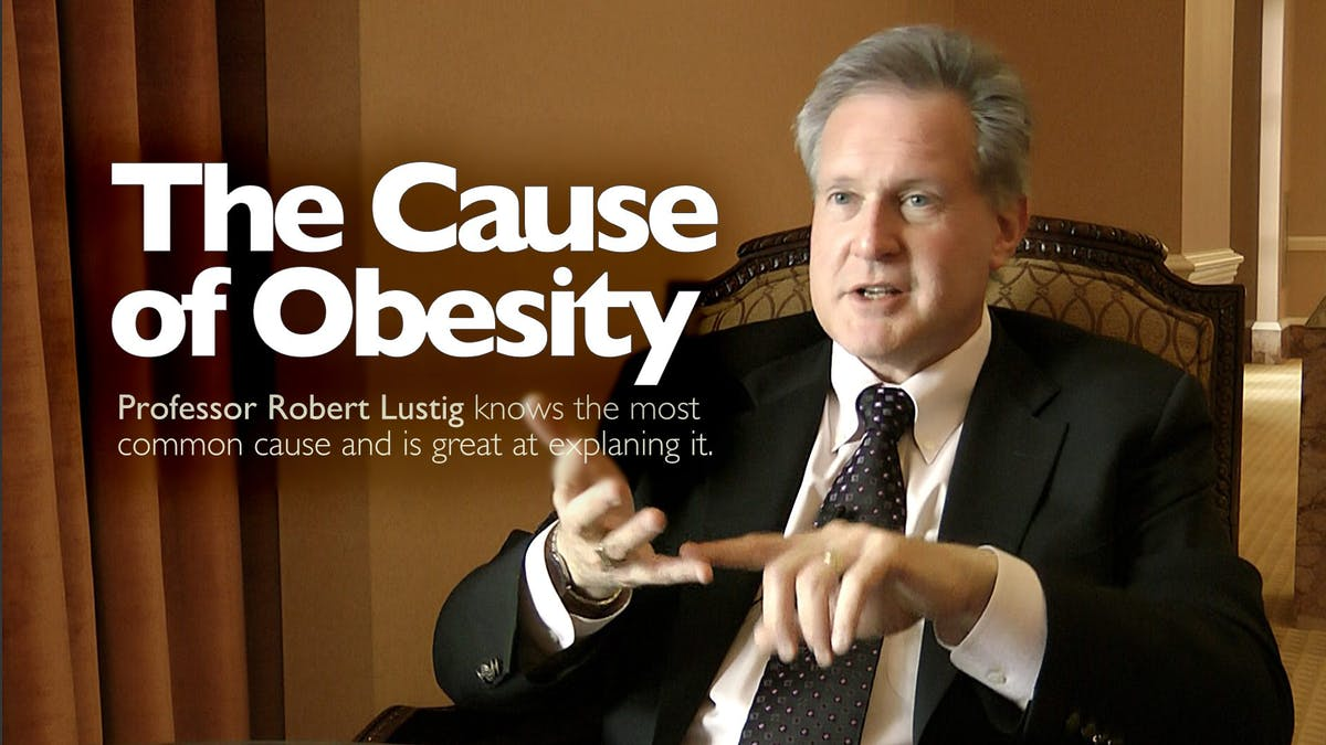 The Cause of Obesity – Professor Robert Lustig