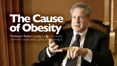 The cause of obesity
