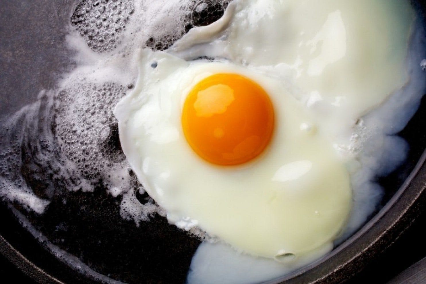 The U.S. Government to Withdraw Warnings About Cholesterol
