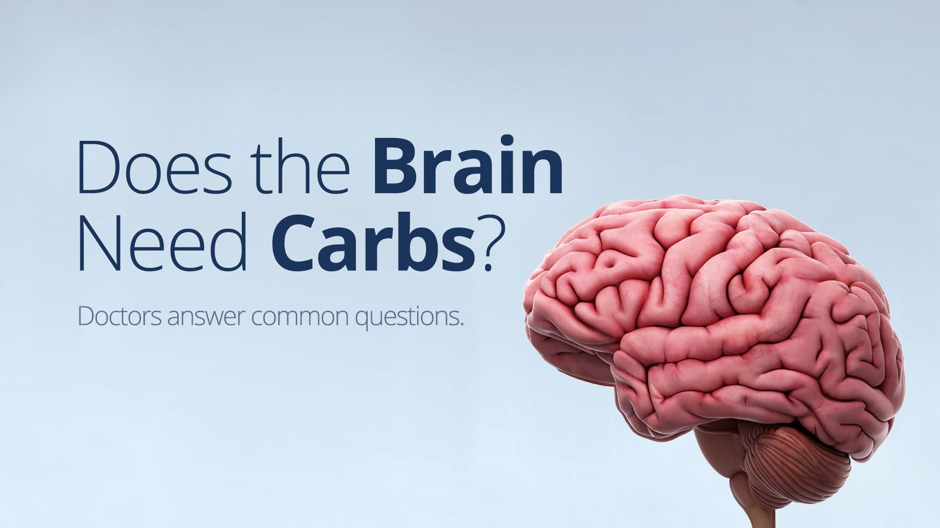Does the Brain Need Carbohydrates?