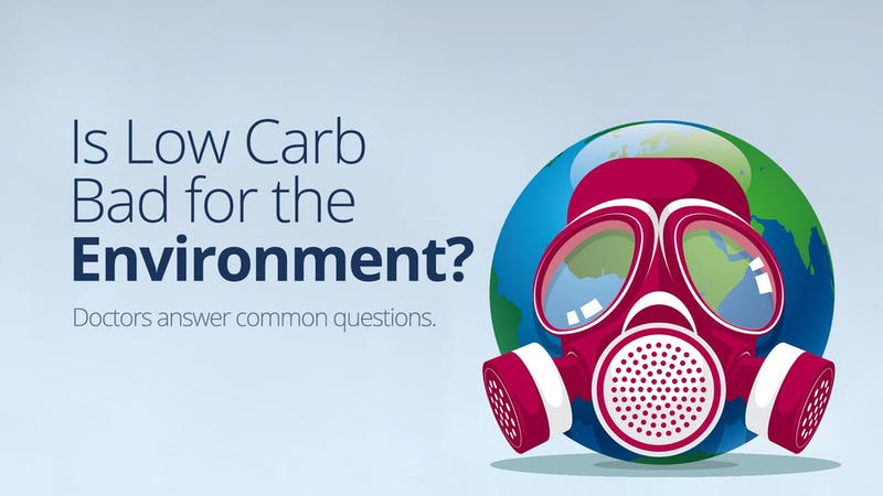 Is Low-Carb Bad for the Environment? – Answers to Common Questions