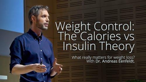 体重控制-卡路里或胰岛素