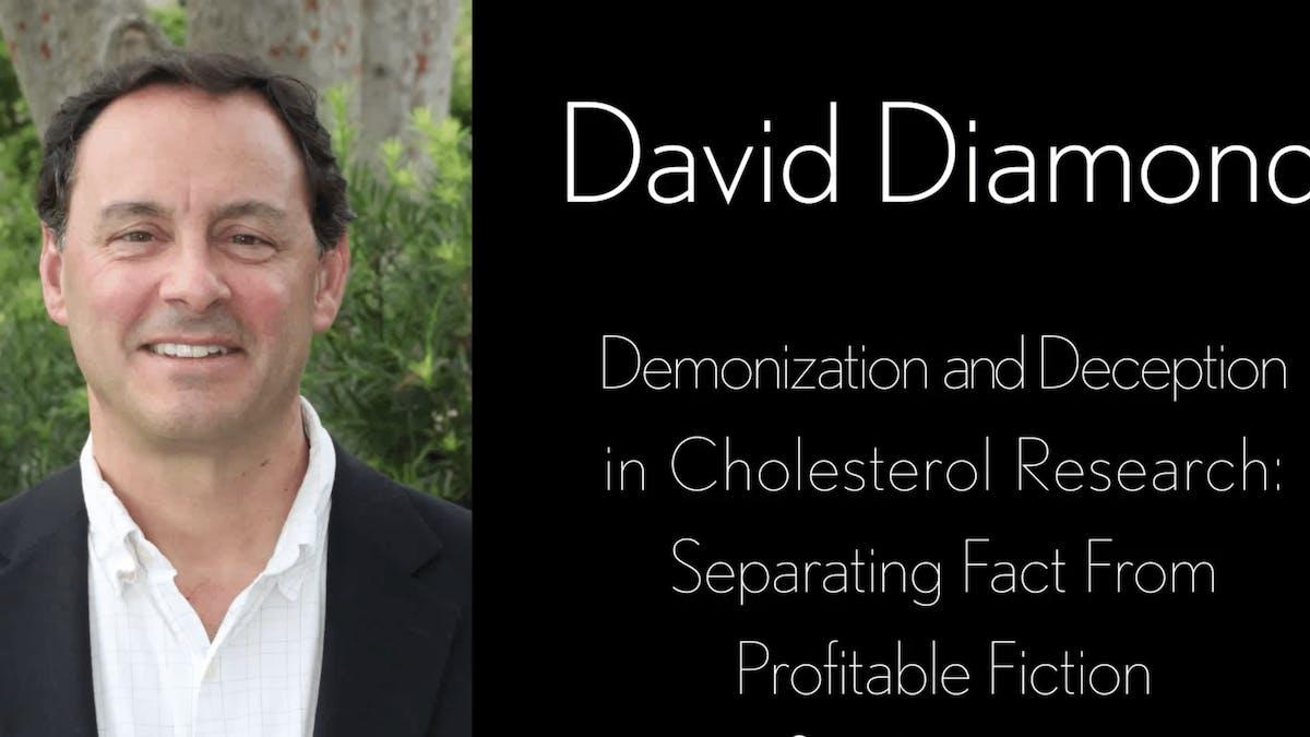 Demonization and Deception in Cholesterol Research – Great New Presentation by Professor David Diamond
