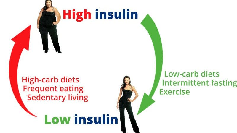 Weight control – the calories vs. insulin theory