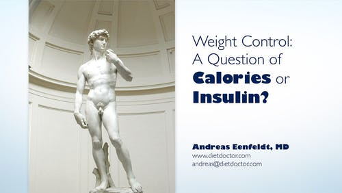 Weight control, the calories vs. insulin theory