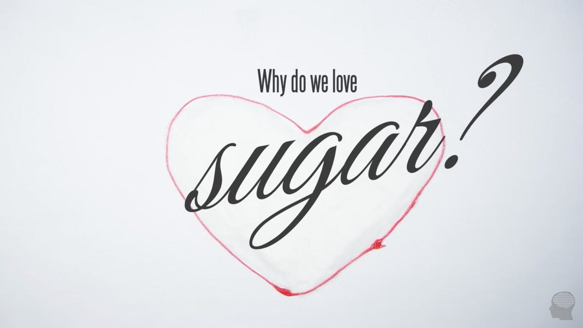 Why do we love sugar?