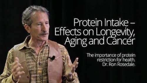 蛋白质摄取-对寿命的影响,衰老和癌症