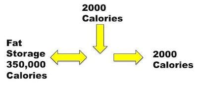 starting weight loss program