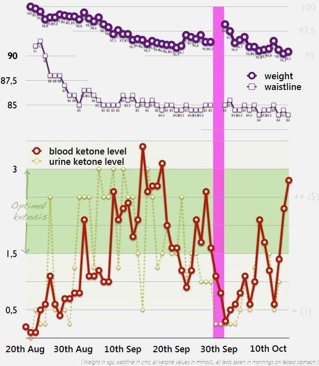 Optimal ketosis experiment