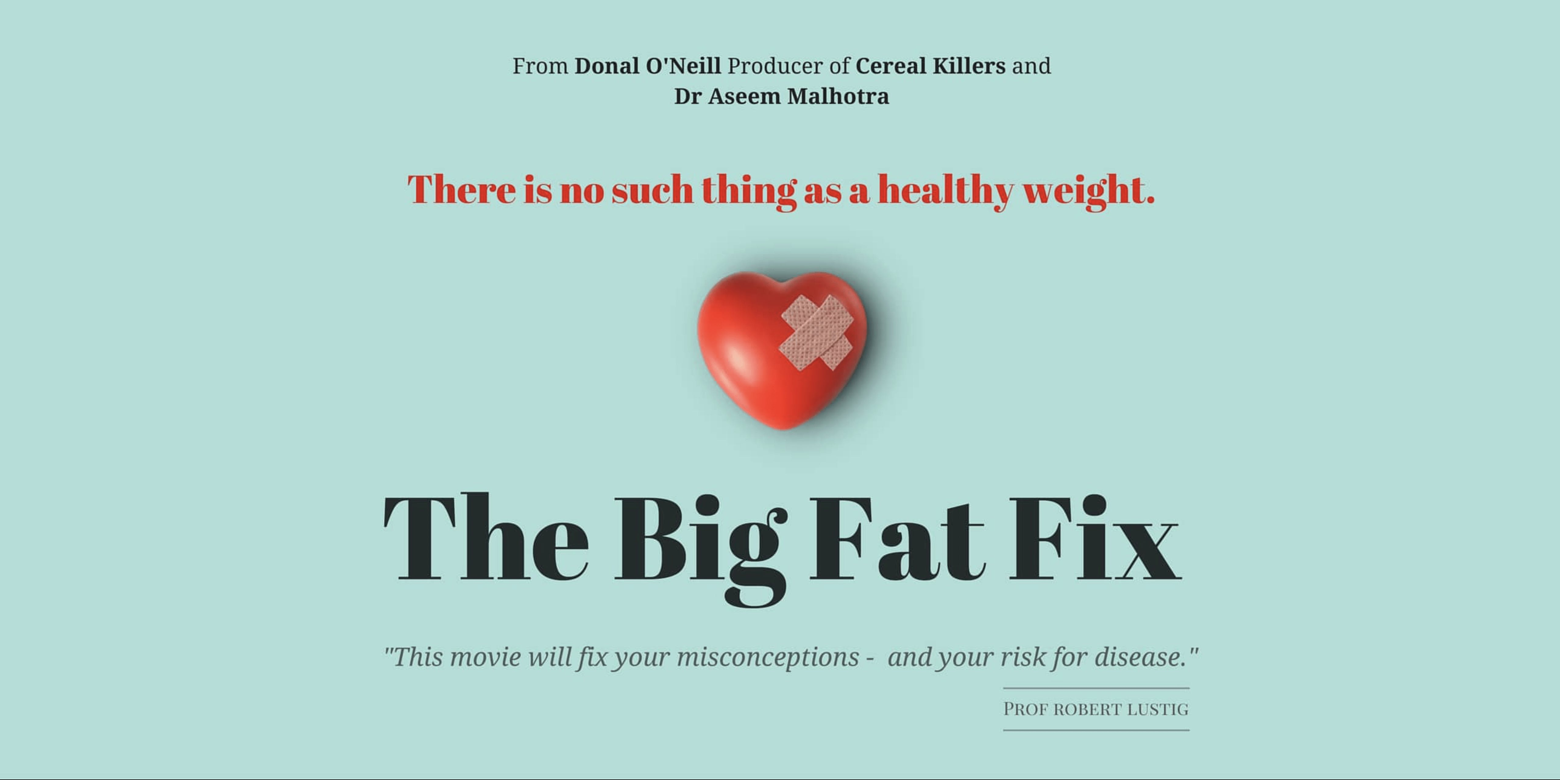 The Big Fat Fix Movie Released Today!