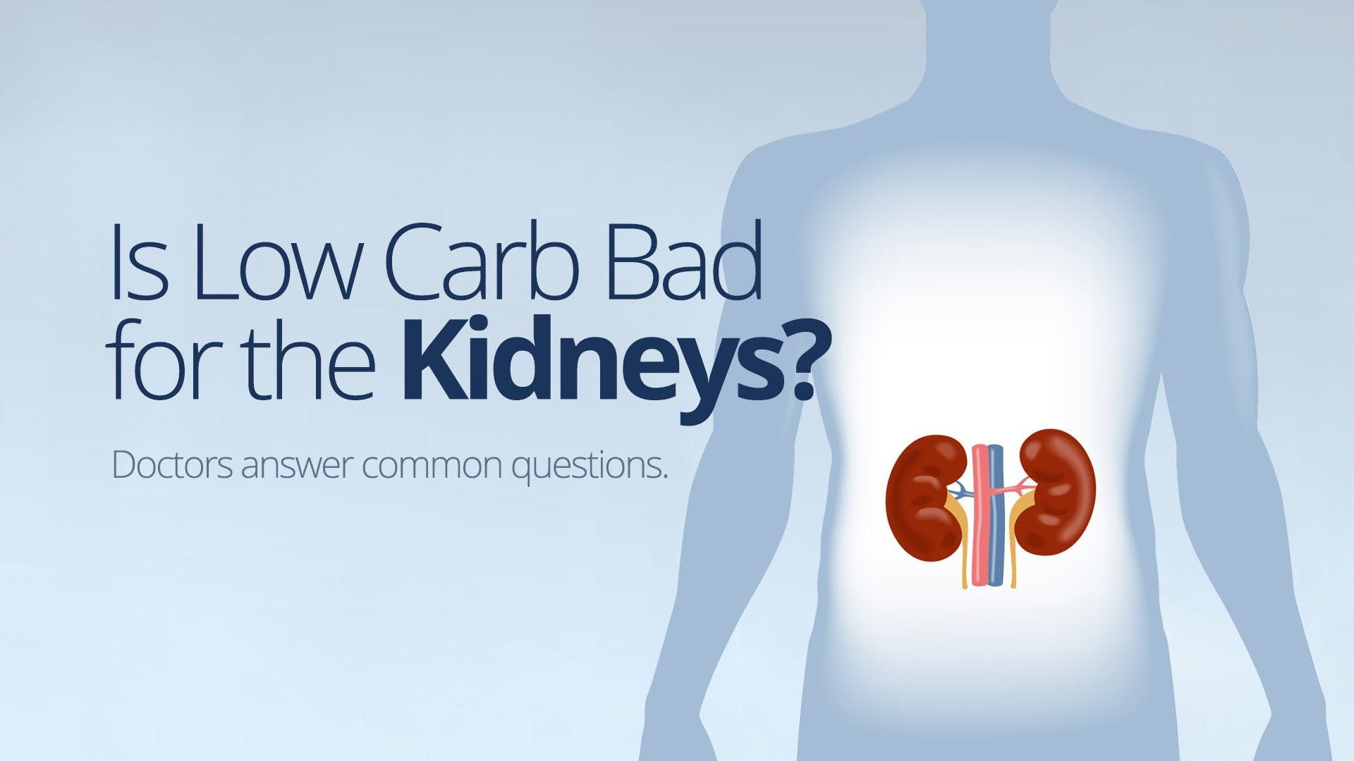 Is Low Carb Bad for the Kidneys?