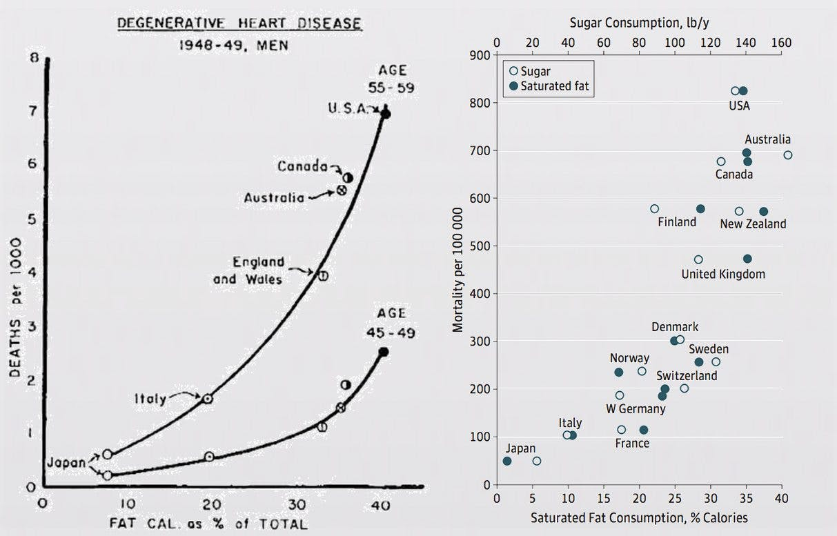 The Hidden Truth Behind Ancel Keys' Famous Fat Graph