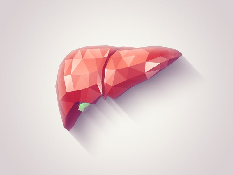 Liver faceted