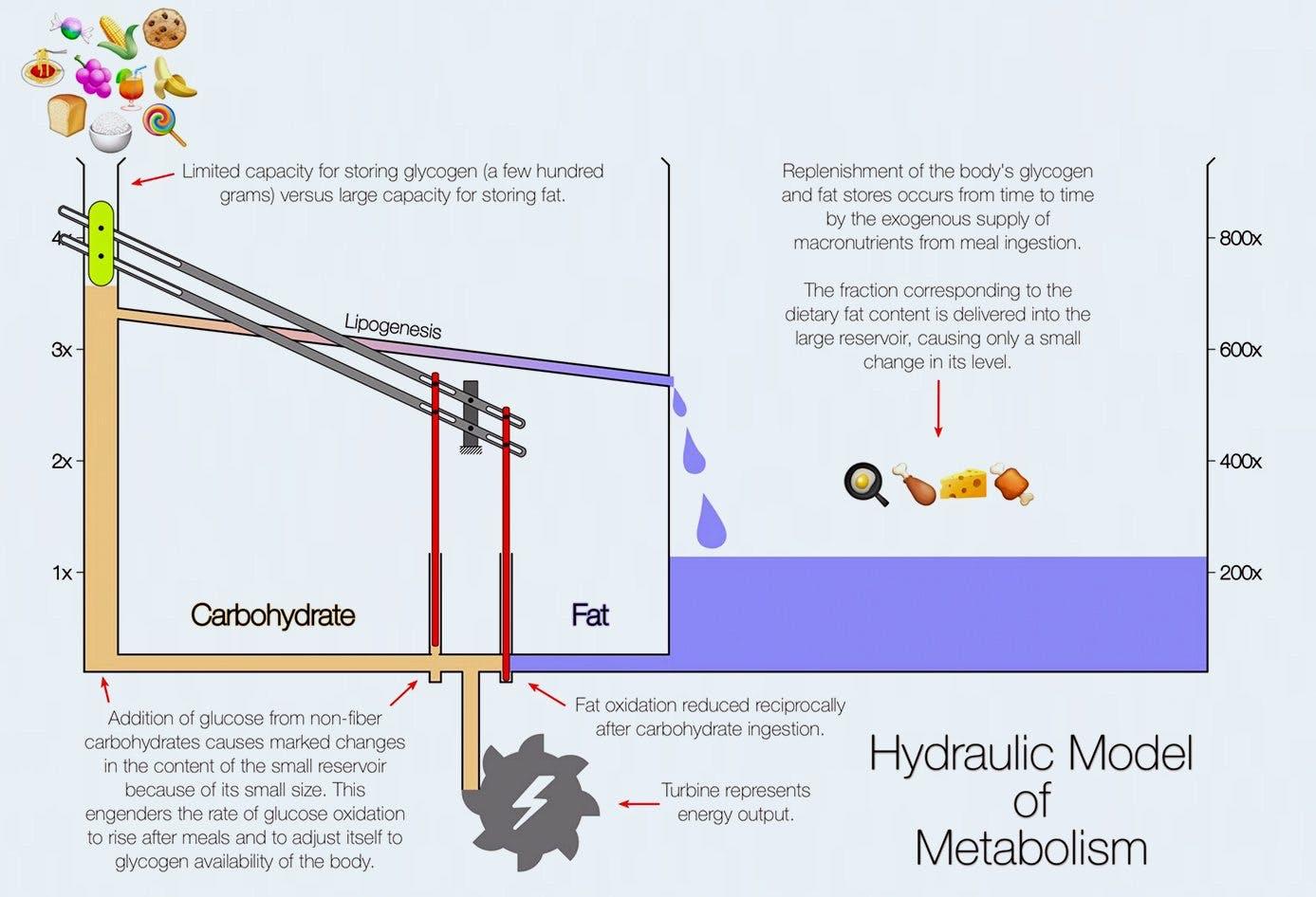 hydrualic3