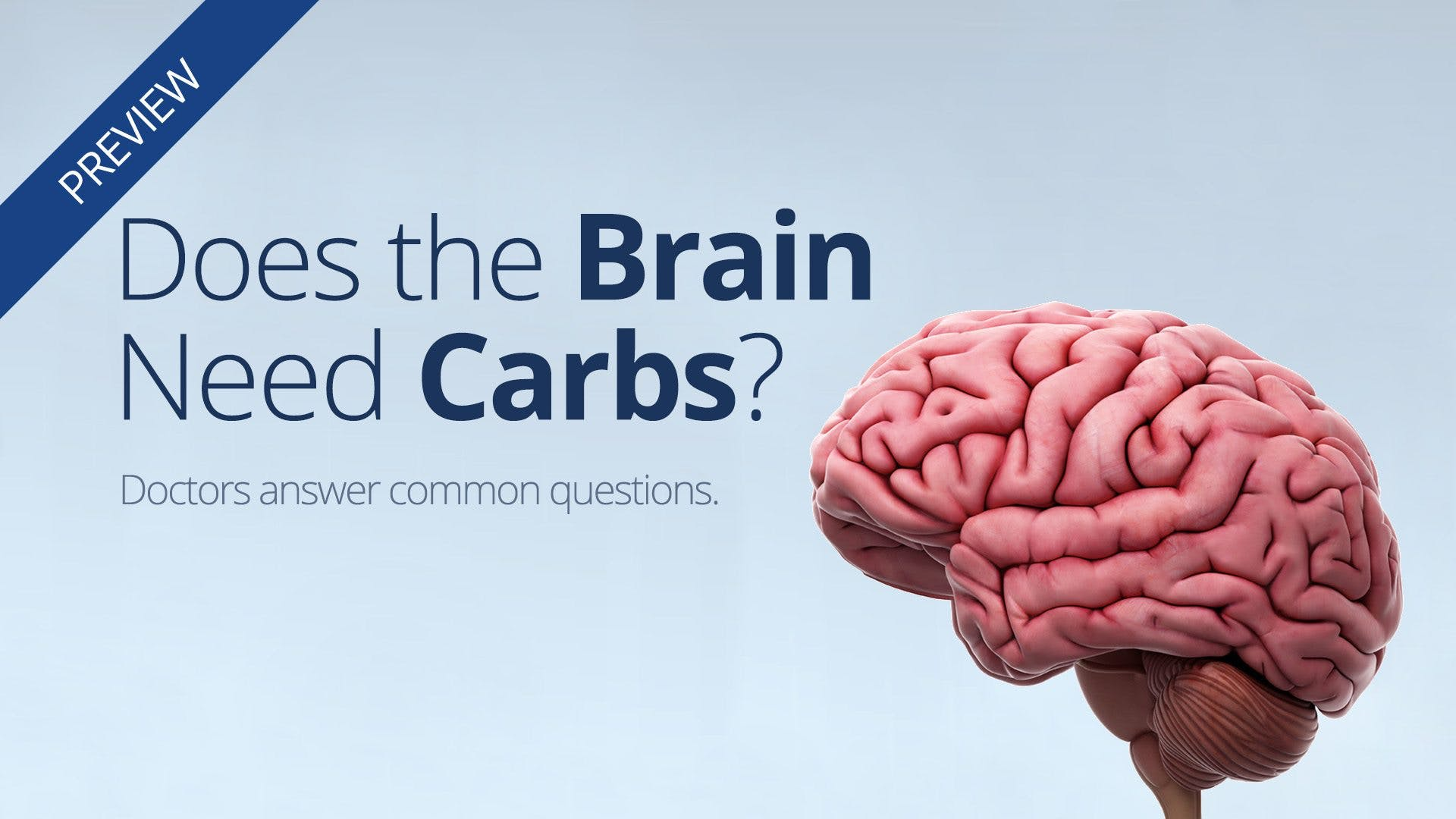 Our #2 low-carb question: Does the brain need carbs?