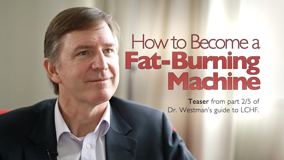 How to become a fat-burning machine [teaser]