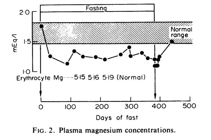 WorldRecFast-Magnesium