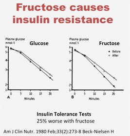 Fructose insulin resistance