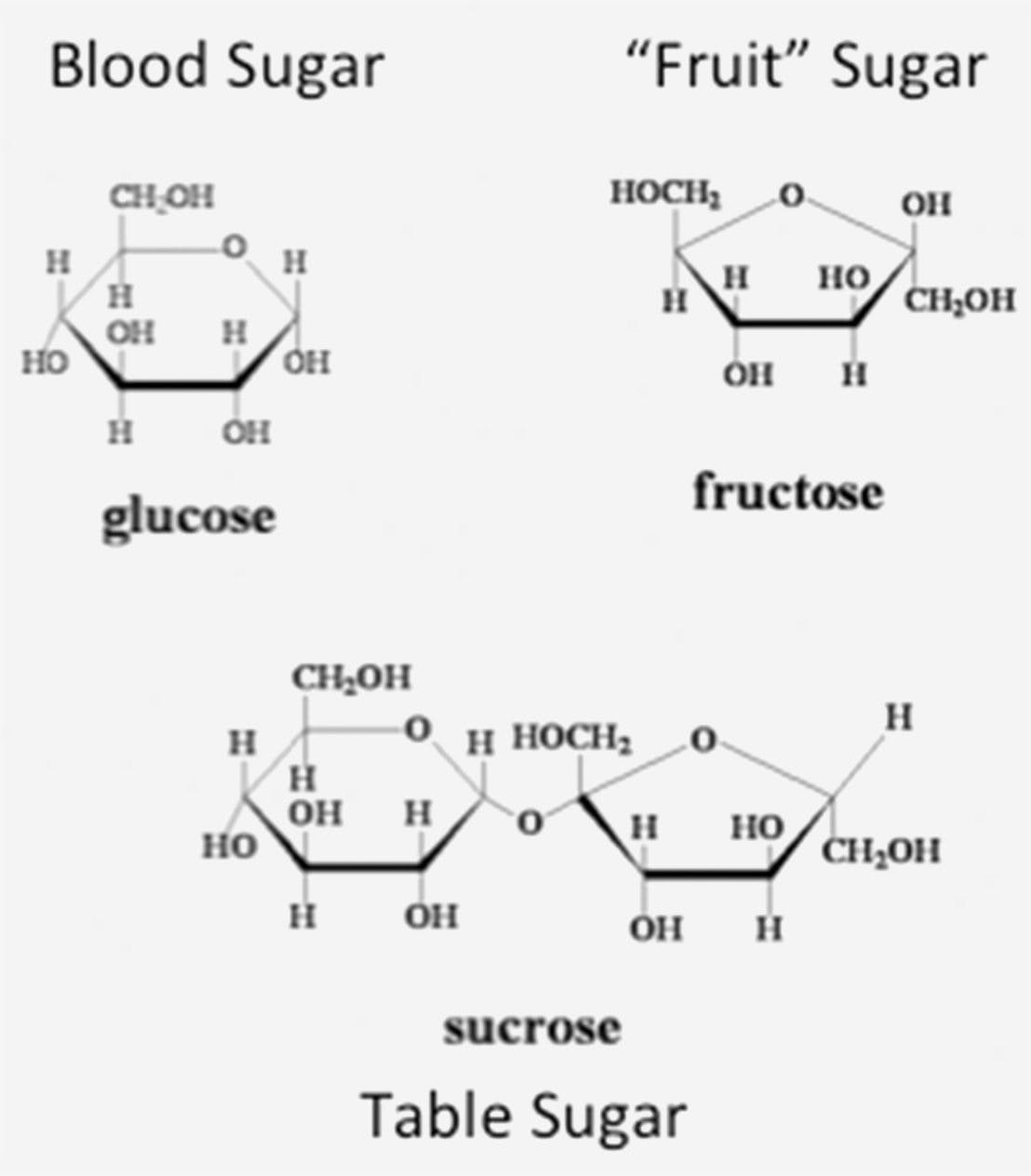 gluc-and-fruc