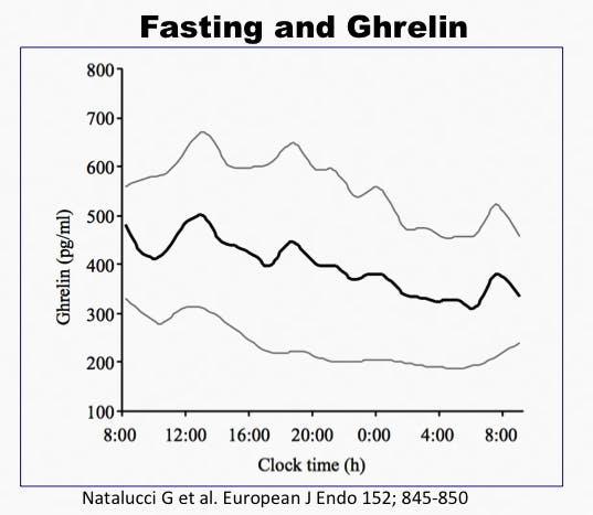 Ghrelin4 (kopia)
