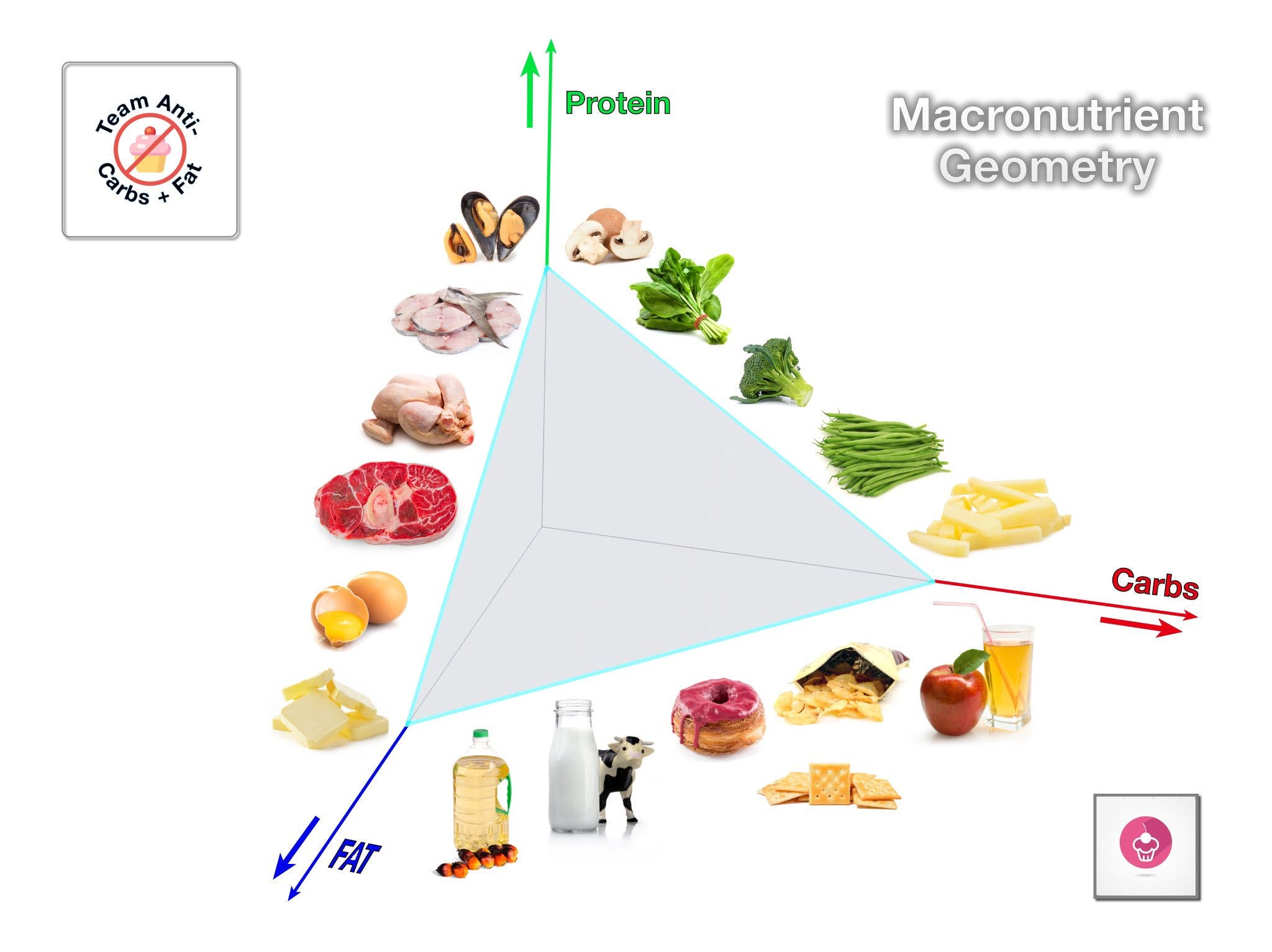 The Macronutrient Triangle – Stay Away from the Base