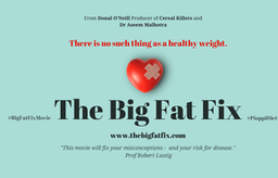 Watch 'The Big Fat Fix'