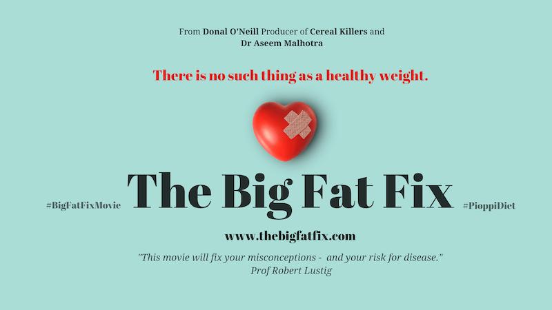 The Big Fat Fix