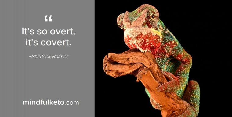 chameleon2-e1502705554960