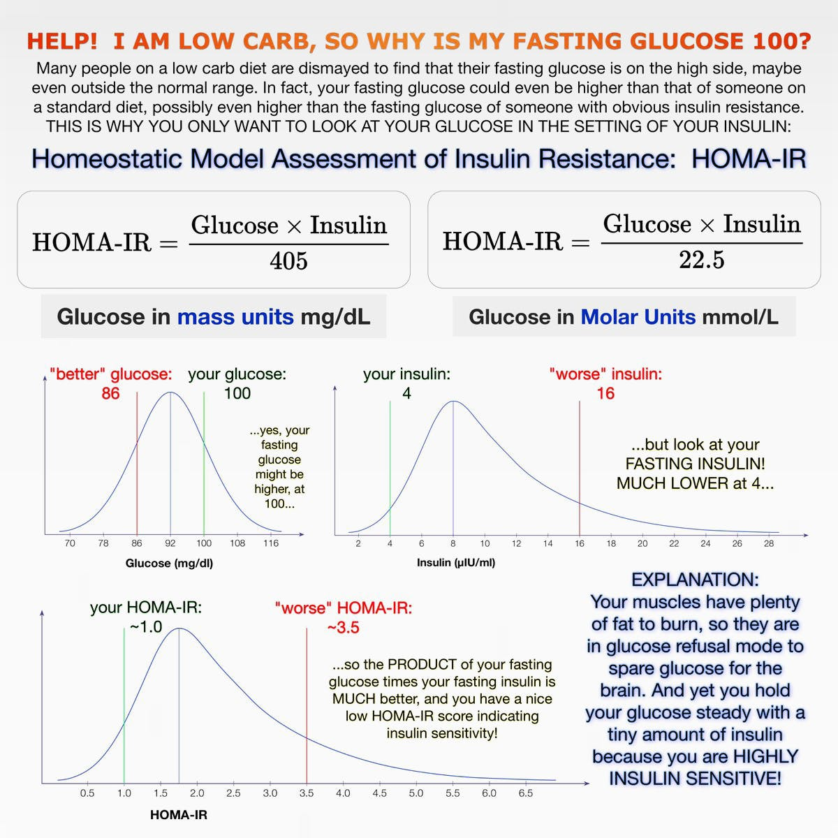 Why Your Fasting Blood Sugar Might Still Be High On Low Carb Diet