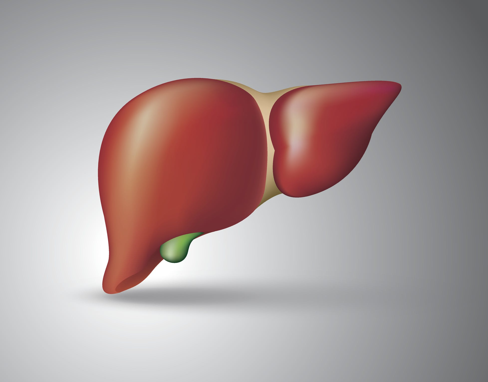 US experts raise red flag over fatty liver disease