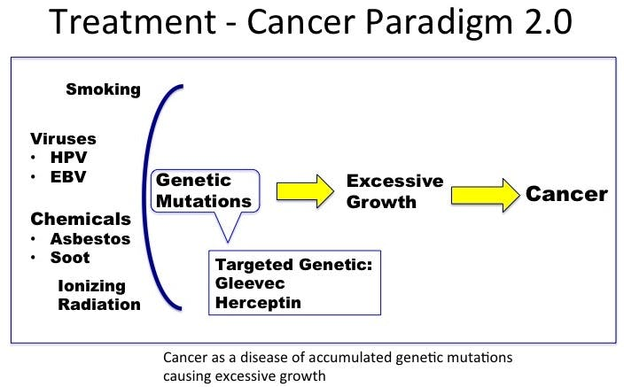 CancerParadigm2-1
