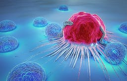 The 6 common features of cancer