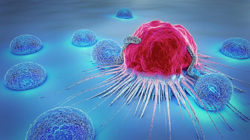3d illustration of a cancer cell and lymphocytes