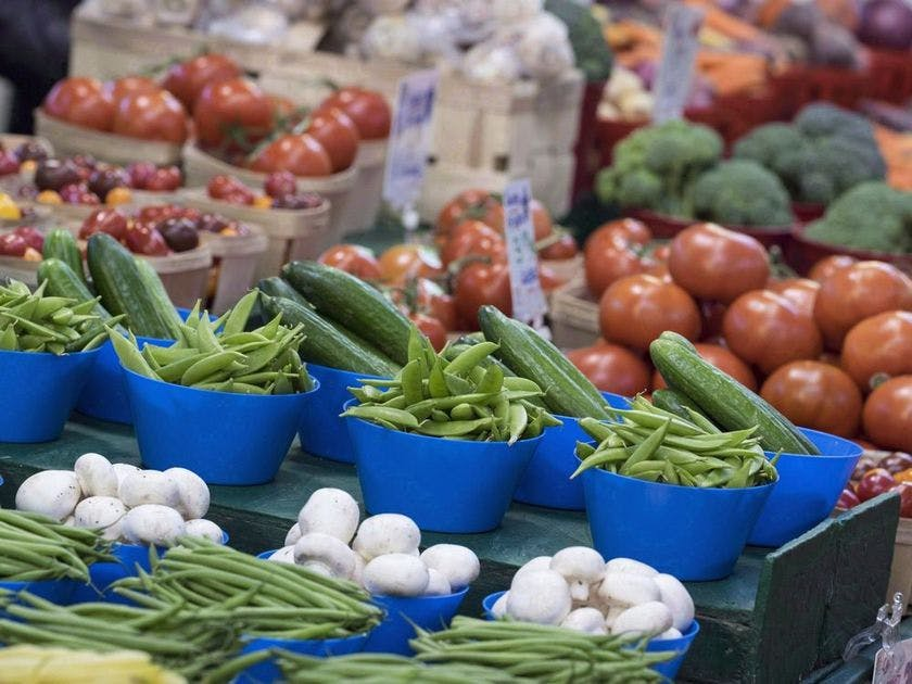New op-ed: The New Canada Food Guide needs to change in accordance with science