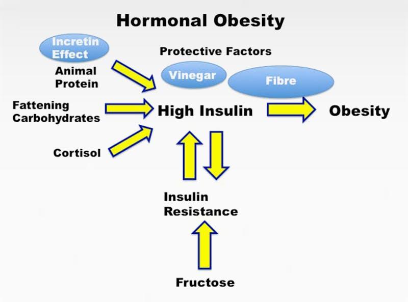 hormonal-obesity