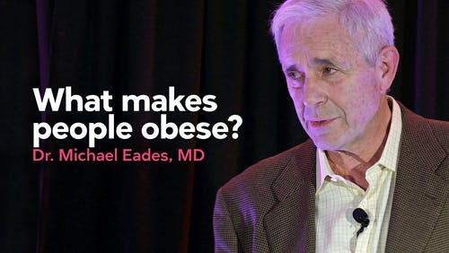 What makes people obese?