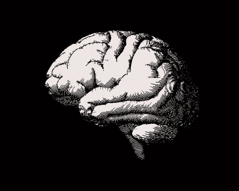 Engraving brain side view illustration on black BG