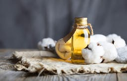 The lucrative story of cotton seed oil