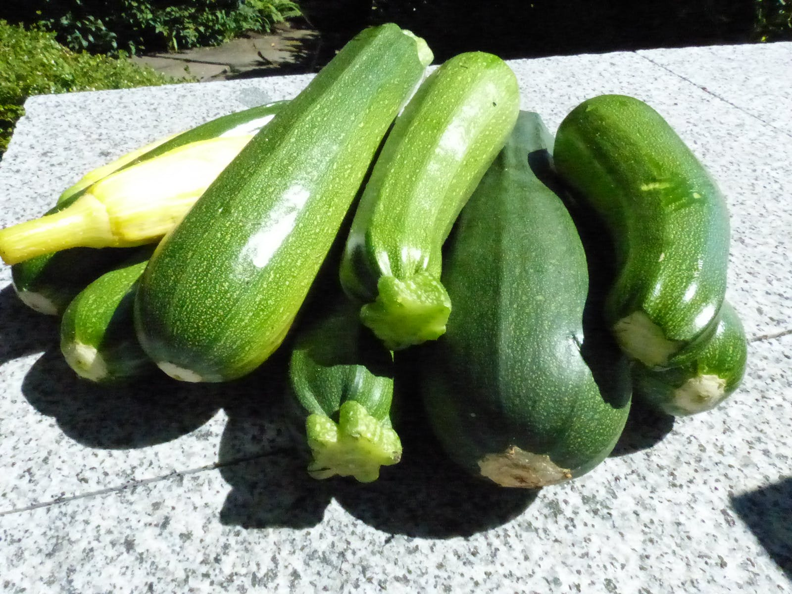 can you eat zucchini on the keto diet