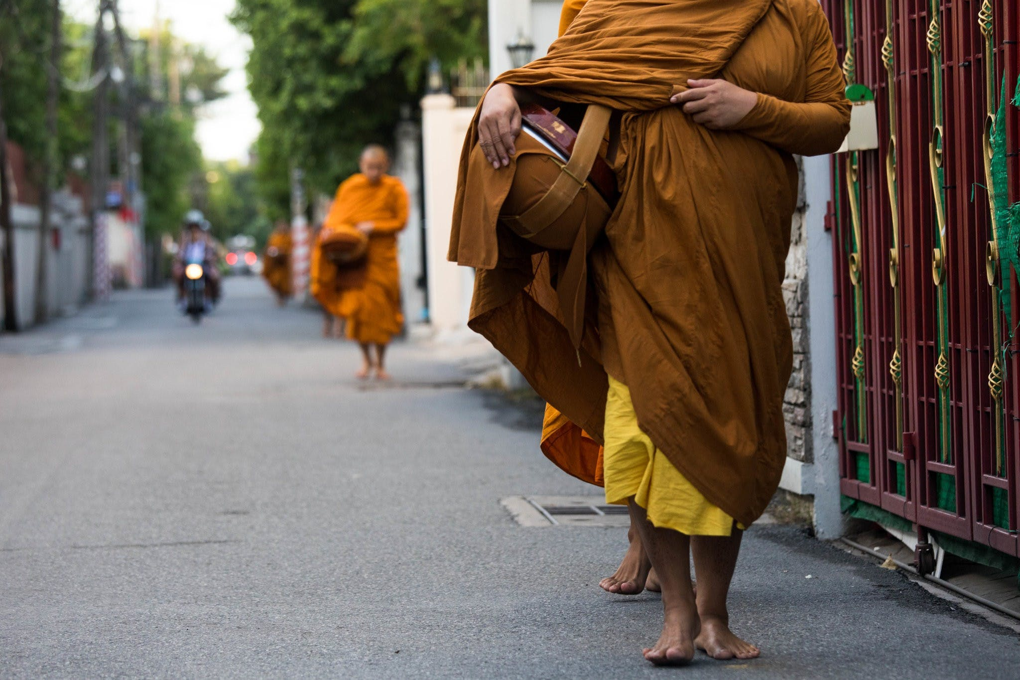 Why is there an obesity epidemic among Thai monks?