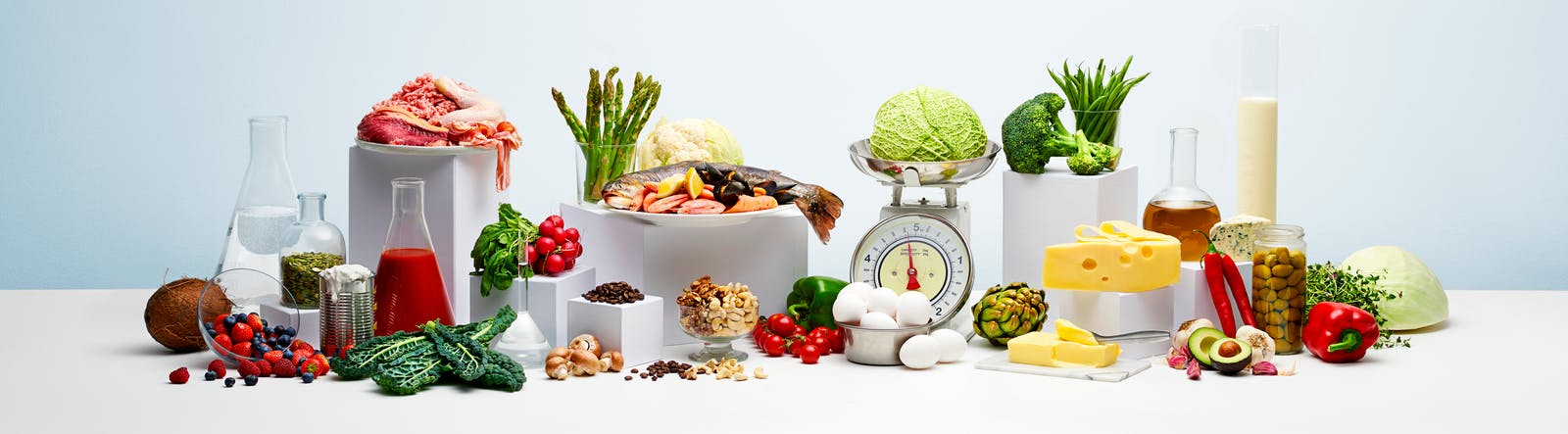 sitio oficial de keto diet
