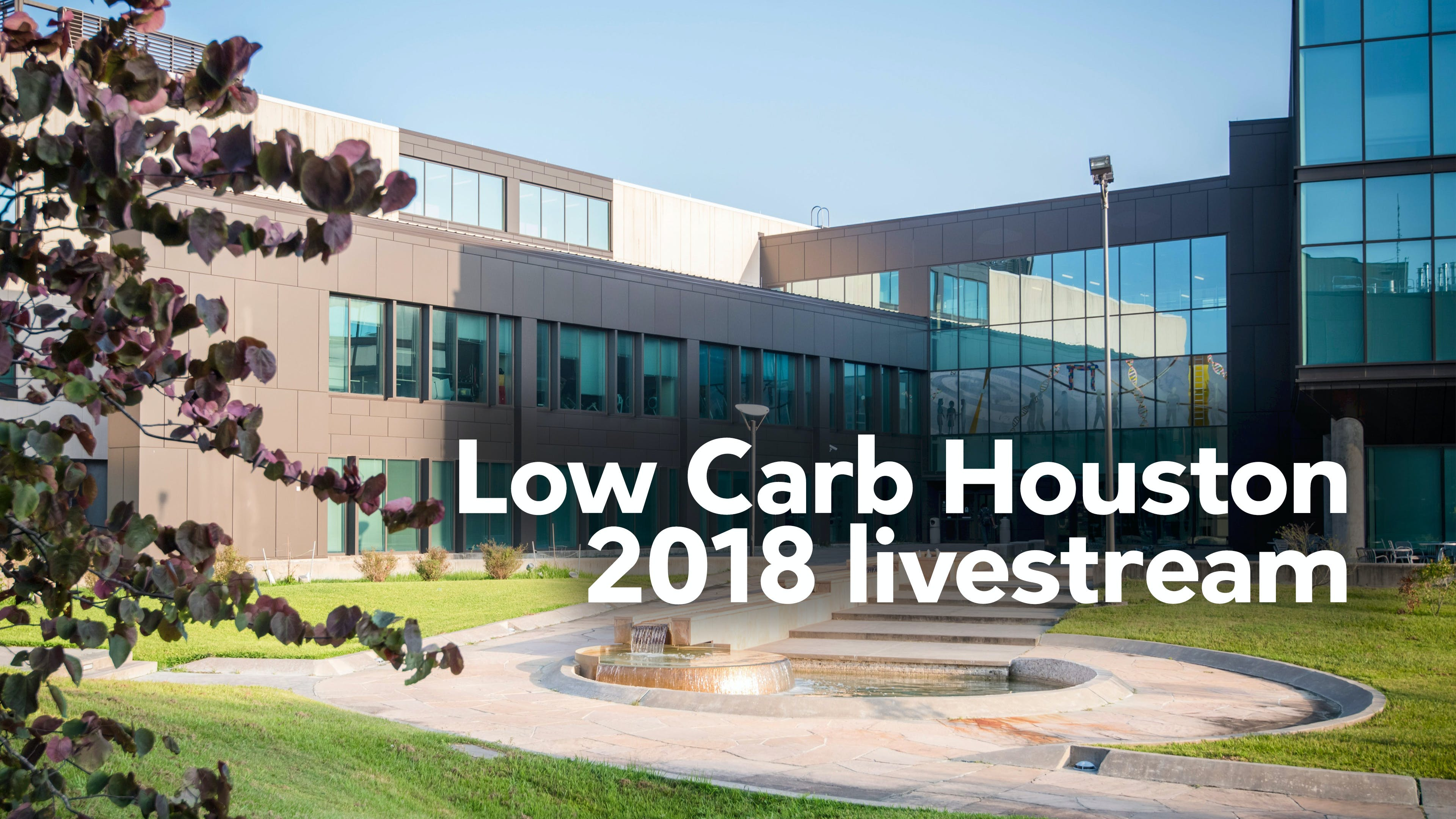Low Carb Houston 2018 livestream