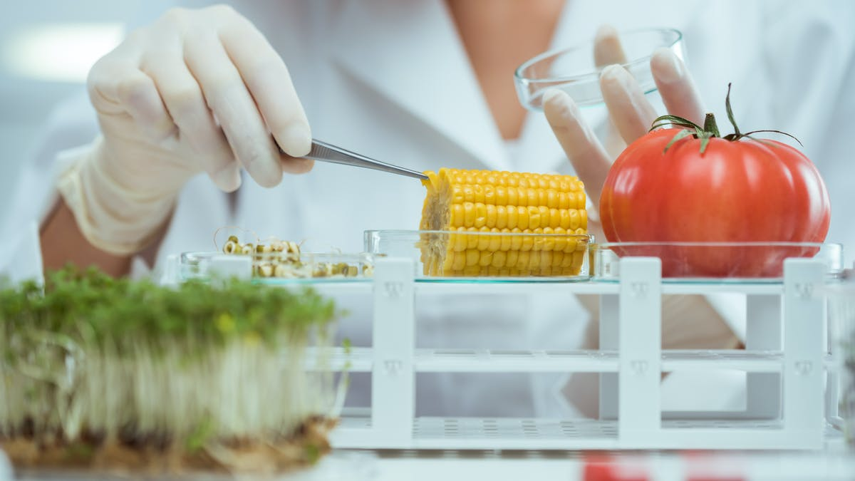 Big Food's hold over nutrition research