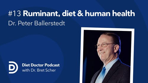 Diet Doctor podcast #13 with Dr. Peter Ballerstedt