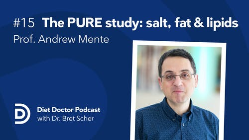 Diet Doctor podcast #15 with Prof. Andrew Mente
