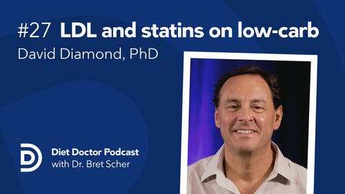 Diet Doctor Podcast #27 – David Diamond, PhD