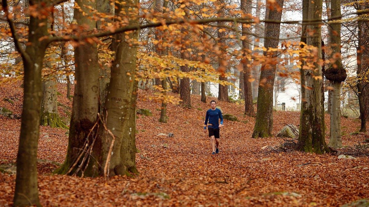 Let\'s Get Moving #2: Walking